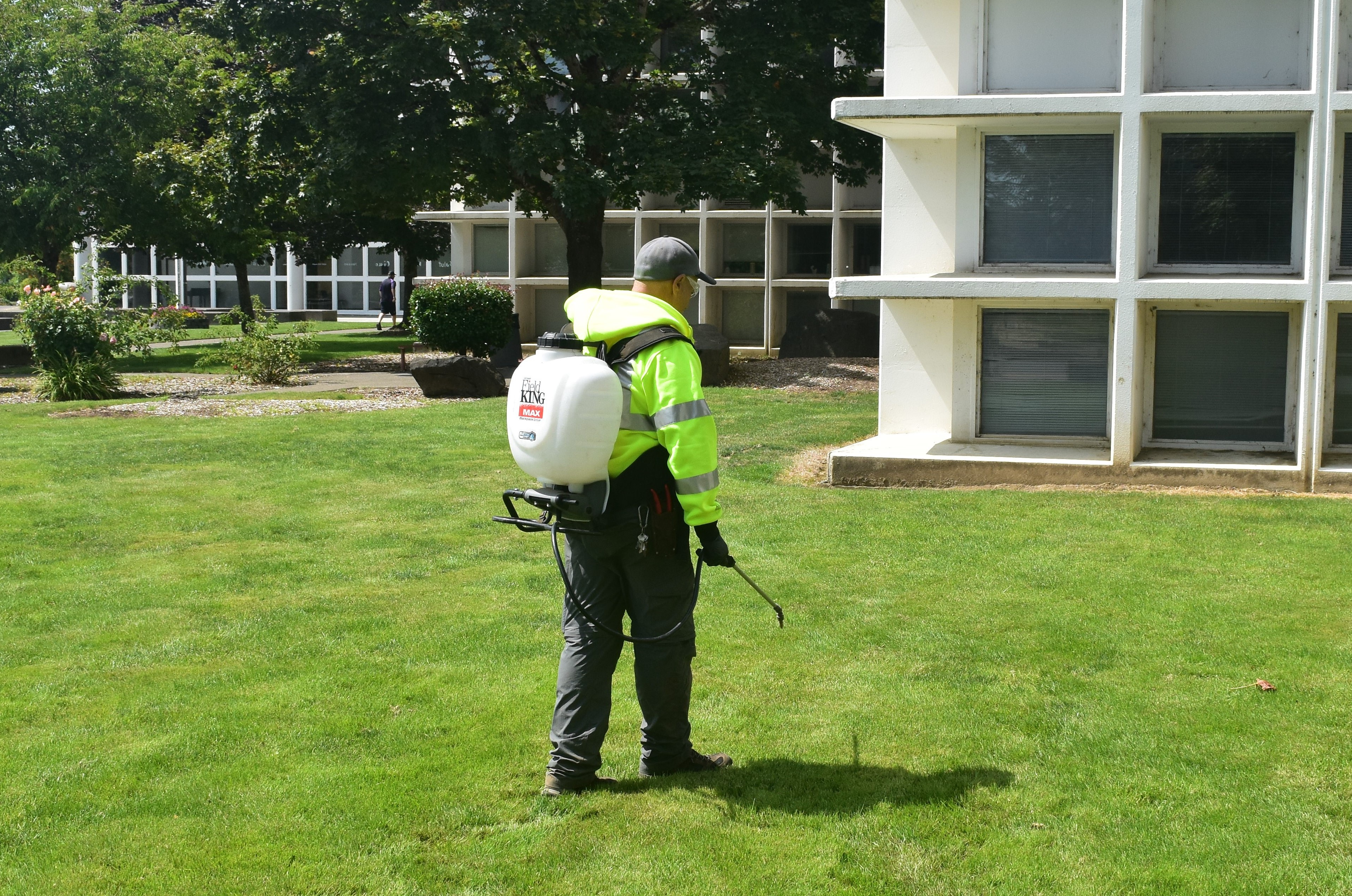 Photo of worker spraying grass.