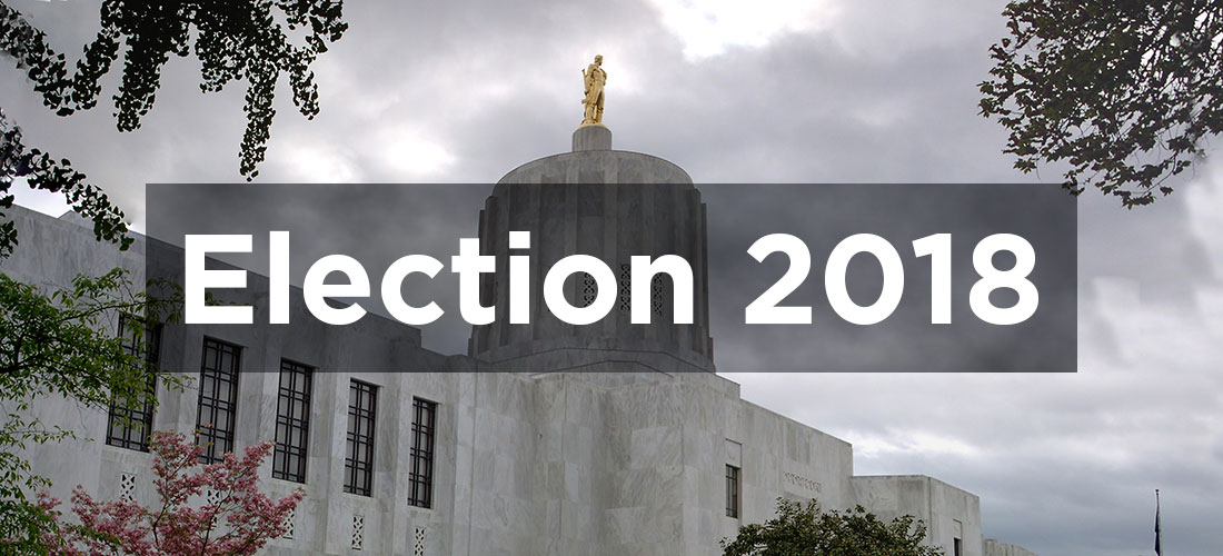 2018 election graphic